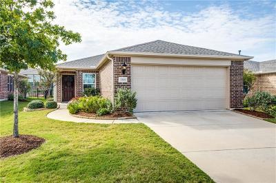 Frisco Single Family Home For Sale: 2507 Honeybee Lane