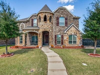 Murphy Single Family Home For Sale: 409 Windy Knoll Drive