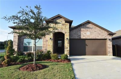 Fort Worth Single Family Home For Sale: 2701 Albatross Lane