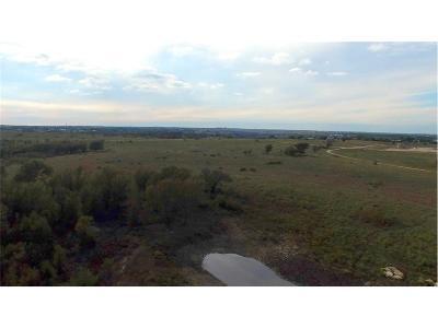 Cresson Farm & Ranch For Sale: 250 E Bluebonnet Drive