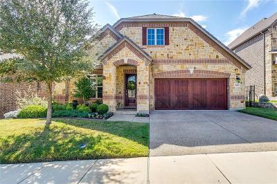 Denton Single Family Home For Sale: 3000 Bella Lago Drive