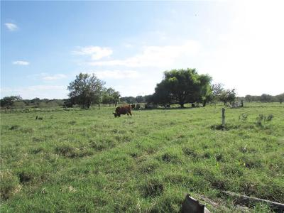Dublin Farm & Ranch For Sale: 0000 County Road 279