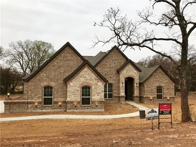 Springtown Single Family Home For Sale: 140 Flying Diamond Drive