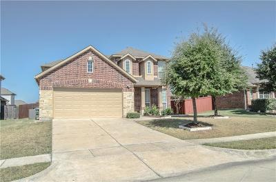 Little Elm Single Family Home For Sale: 2313 Twilight Star Drive
