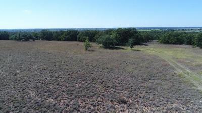 Erath County Farm & Ranch For Sale: Tbd County Road 351