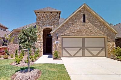 Little Elm Single Family Home For Sale: 1805 Spoonbill Drive