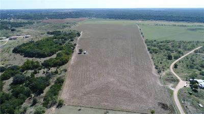 Brownwood Farm & Ranch For Sale: 7025 Thrifty Lane