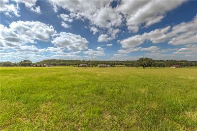 Mineral Wells TX Residential Lots & Land For Sale: $22,000