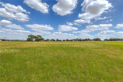 Mineral Wells Residential Lots & Land For Sale: 435 Brazos West Drive