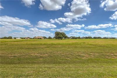 Mineral Wells Residential Lots & Land For Sale: 415 Brazos West Drive