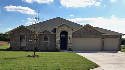 Nevada Single Family Home For Sale: 309 Amber Lane