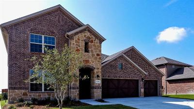 Little Elm Single Family Home For Sale: 1401 Marines Drive