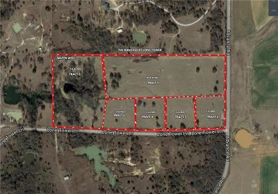 Parker County Farm & Ranch For Sale: 00c Lone Tower Lane