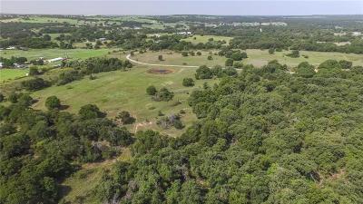 Parker County Farm & Ranch For Sale: Tbd Fm 920