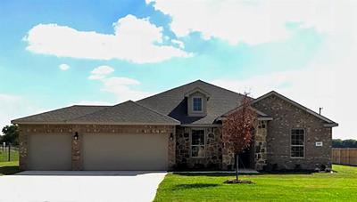 Nevada Single Family Home For Sale: 321 Amber Lane