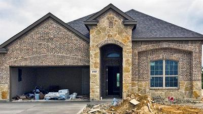 Rockwall Single Family Home For Sale: 1025 Sunnyvale Drive