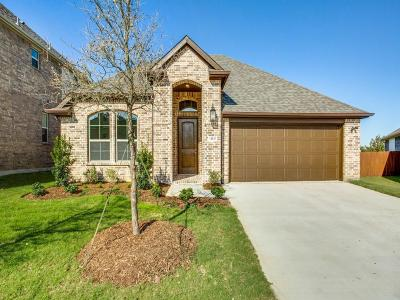 Fort Worth Single Family Home For Sale: 14845 Cedar Gap Place