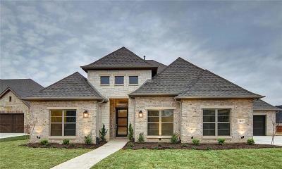 Argyle Single Family Home For Sale: 317 Nora Lane