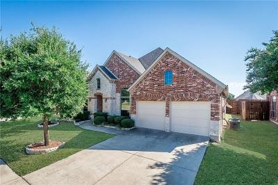 Little Elm Single Family Home For Sale: 2628 Pine Trail Drive