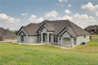 Aledo Single Family Home For Sale: 9476 Bear Creek Road