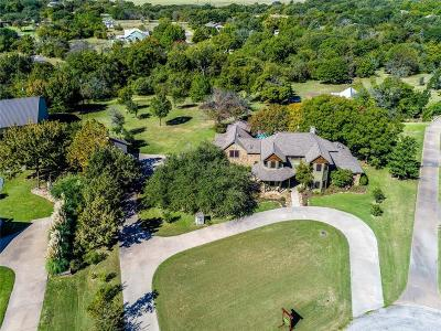 Parker County Single Family Home For Sale: 133 Westridge Trail