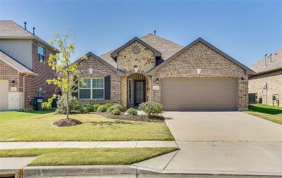 Little Elm Single Family Home For Sale: 3416 Canyon Lake Drive