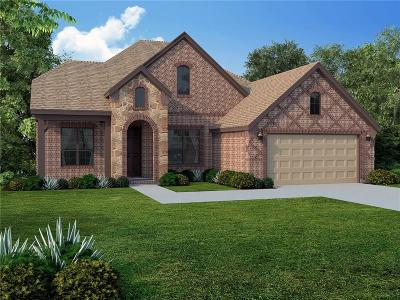 Prosper Single Family Home For Sale: 971 Waterview Drive