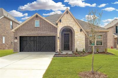 Collin County Single Family Home For Sale: 3114 Spring Creek Trail
