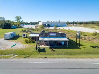 Springtown Commercial For Sale: 5050 E Highway 199