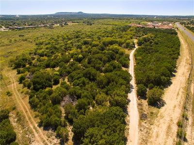 Hood County Farm & Ranch For Sale: 1331 Paluxy Highway