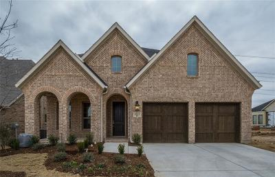 Flower Mound Single Family Home For Sale: 6113 Whiskerbrush