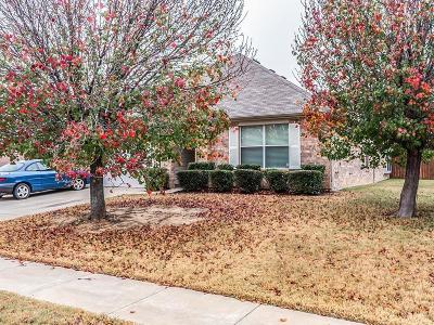 Denton Single Family Home For Sale: 4013 San Lorenzo Drive
