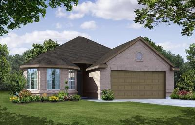 Fort Worth TX Single Family Home For Sale: $206,526