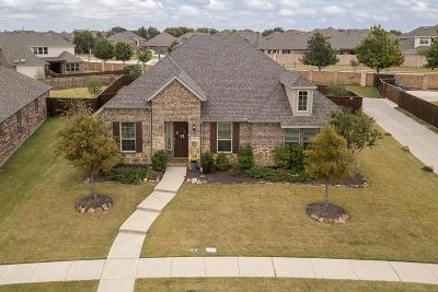 Allen Single Family Home For Sale: 1032 Balmorhea Drive