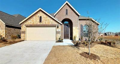 Denton County Single Family Home For Sale: 1809 Spoonbill Drive