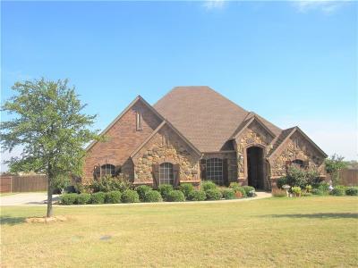 Single Family Home For Sale: 115 Vista Drive