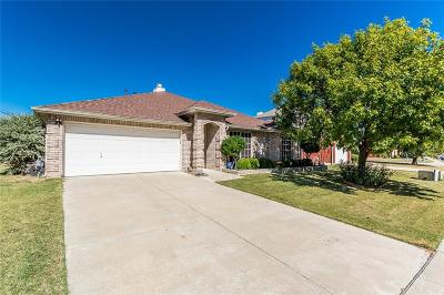 Little Elm Single Family Home For Sale: 237 Willowlake Drive