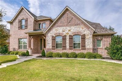 Frisco Single Family Home For Sale: 12829 Walnut Ridge Drive