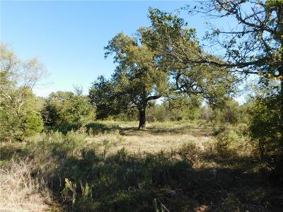 Palo Pinto County Farm & Ranch For Sale: 2953 Turkey Creek Road