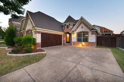 Grand Prairie Single Family Home For Sale: 344 Gotland Drive