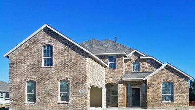 Rockwall Single Family Home For Sale: 3221 Pecos Lane