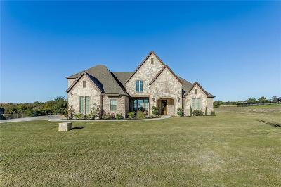 Aledo Single Family Home For Sale: 210 Rising Oak Drive