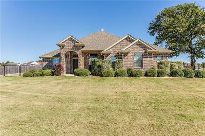 Weatherford Single Family Home For Sale: 172 Savannah Drive