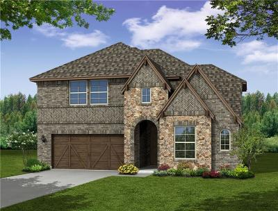 Collin County Single Family Home For Sale: 3024 Spring Creek Trail