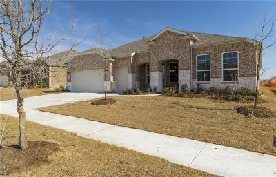 Frisco Single Family Home For Sale: 6554 Rustic Villa Lane