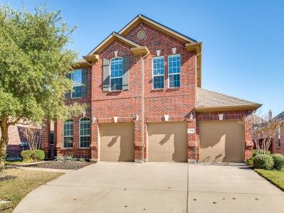 Lewisville Single Family Home For Sale: 1149 Annalea Cove Drive