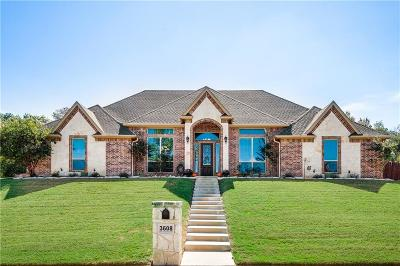 Weatherford Single Family Home For Sale: 3608 Foot Hills Drive