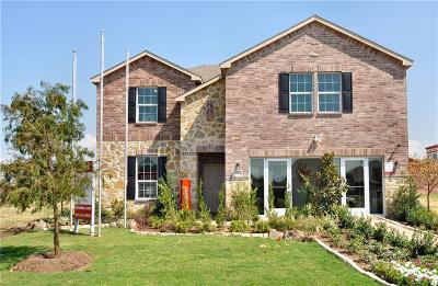 Little Elm Single Family Home For Sale: 1613 Flamingo Drive