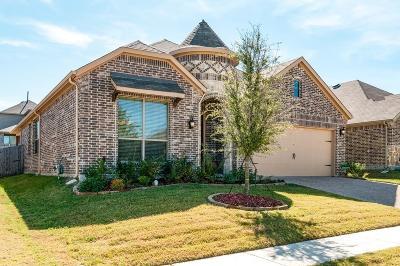 Single Family Home For Sale: 3012 Veranda Vista Drive