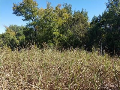 Erath County Residential Lots & Land For Sale: Tbd. Sunfish Point